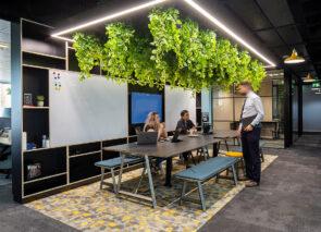Gebruik van planten op kantoor - Green office