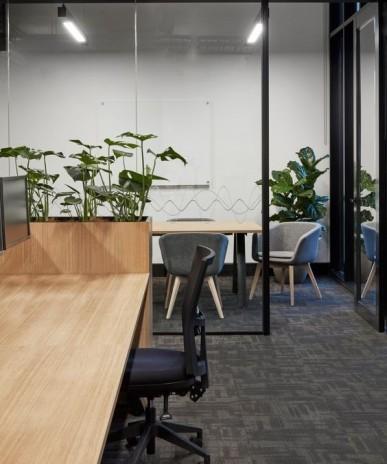 Planten op kantoor voor een betere luchtkwaliteit