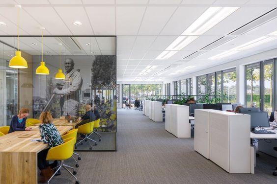 In een moderne kantoorinrichting mag kleur niet ontbreken