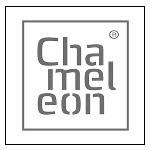 Chameleon Writing